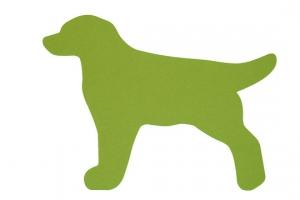 Koberec do detskej izby labrador zelený